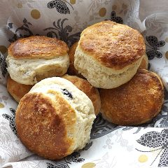 Buttermilk Scones 2 Ways Blueberry and Plain