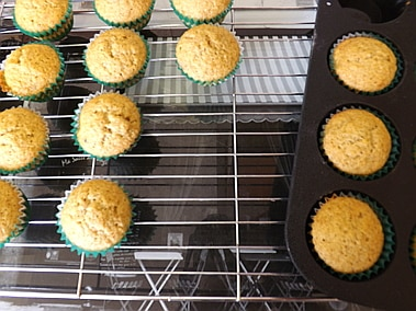 mini cupcakes cooling