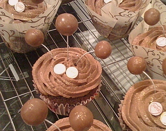 frosted malted chocolate cupcakes