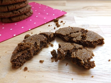 a Molasses Cookies broken up