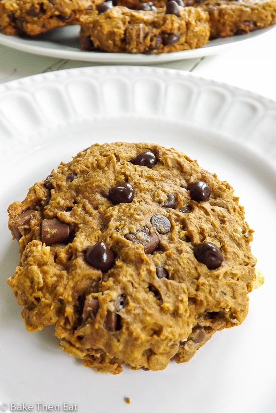 Breakfast Chocolate Chip Pumpkin Oatmeal Cookies | BakeThenEat.com